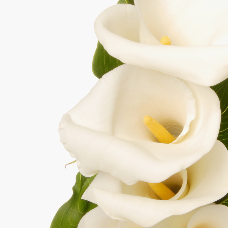 thumbs_our-flowers_callas.jpg