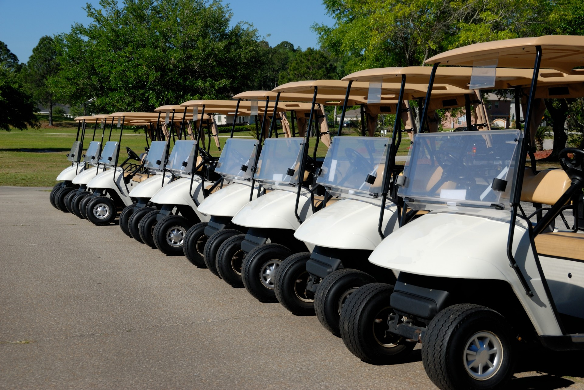 golf-carts-1403117132HiZ.jpg