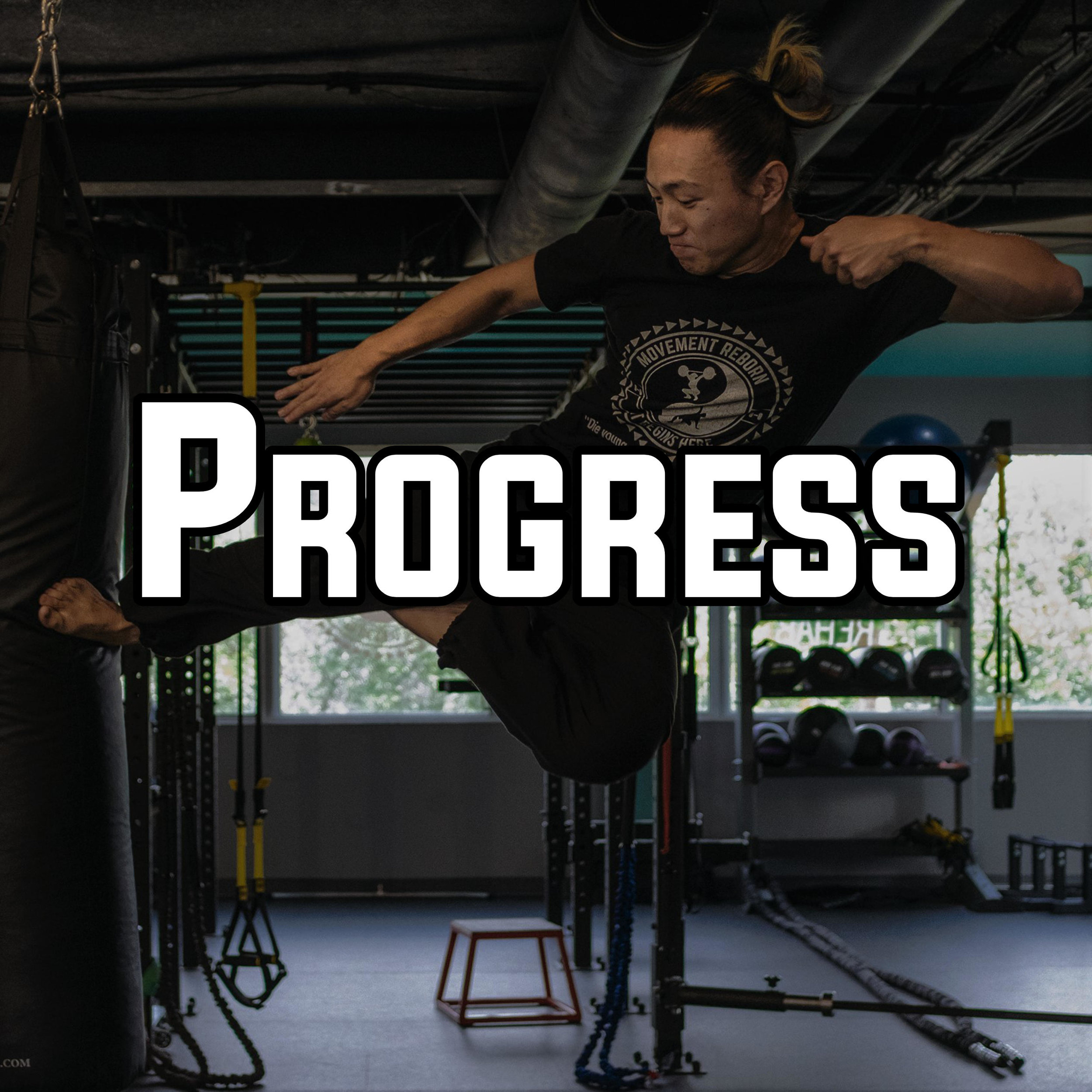 After the fundamentals are set, we can progress you to any other health and fitness en-devours you desire, from Olympic Lifting, Kettlebells, Calisthenics, Weightlifting, Animal Flow, Martial Arts, Boxing, Progressing in any sport etc. We fully customize your workouts based on where you are at and where you want to go.