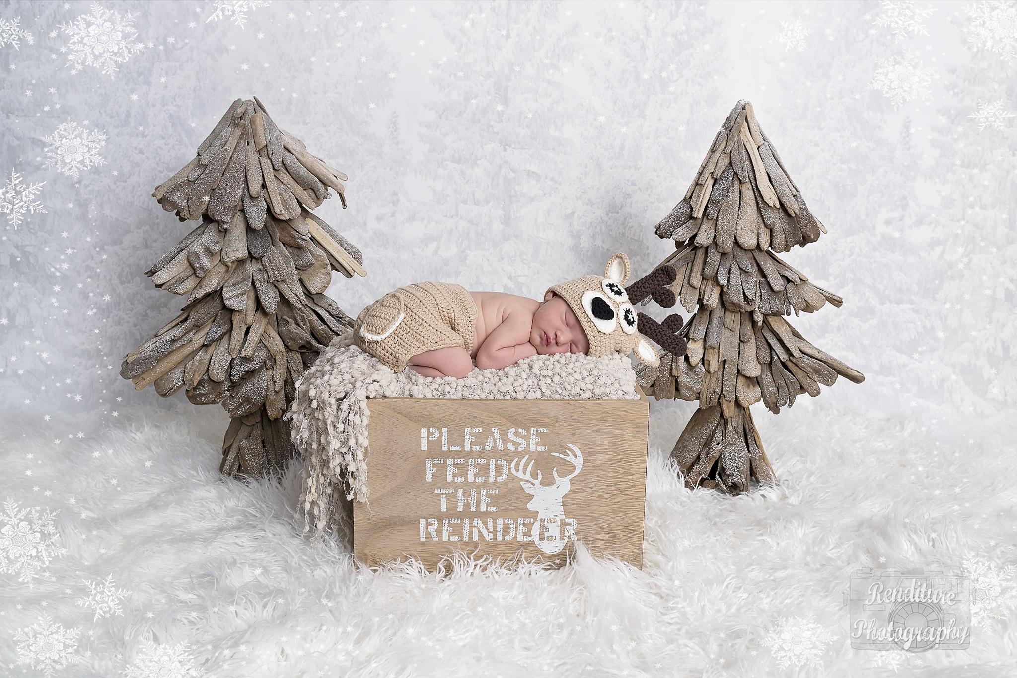 Saskatoon-Newborn-Family-Renditure-Mini-Session-Photography-Photographer-Christmas-Holiday-Saskatchewan-470 FBR.jpg