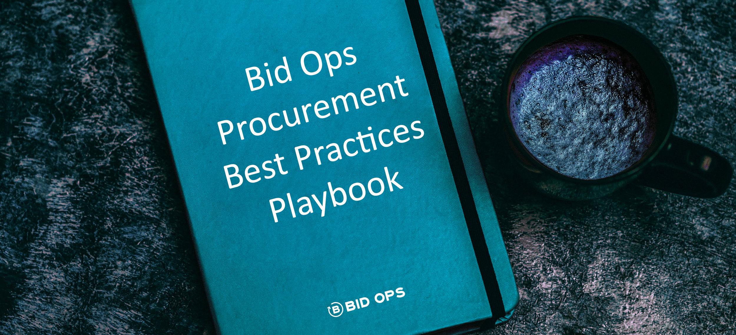 procurement playbook copy.jpg