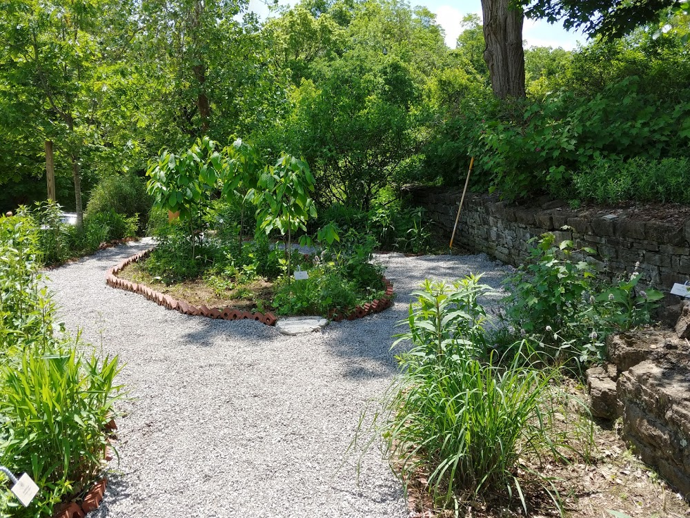 Model Native Garden