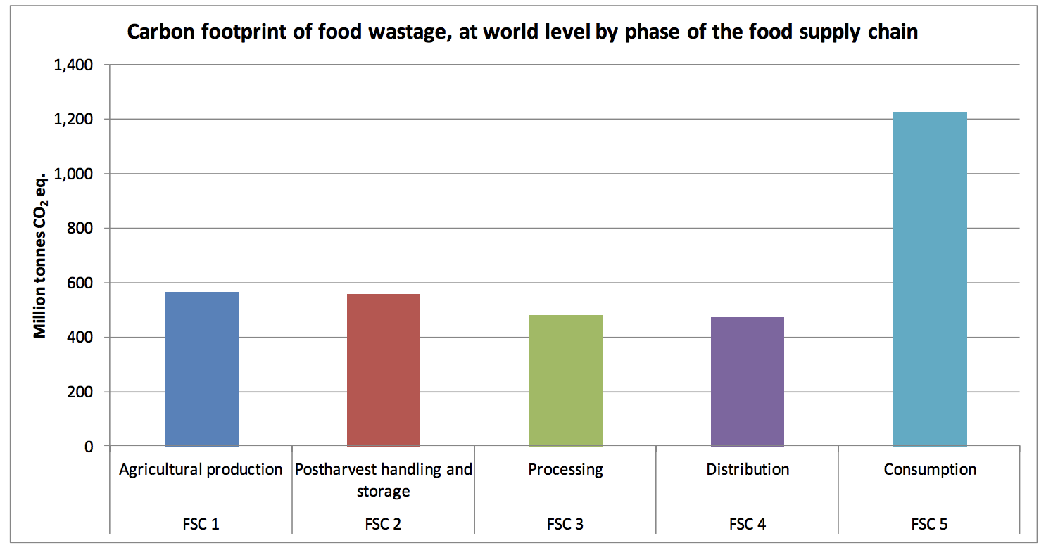 The carbon footprint of food waste during consumption can be decreased if you change the way you shop.  Image Source