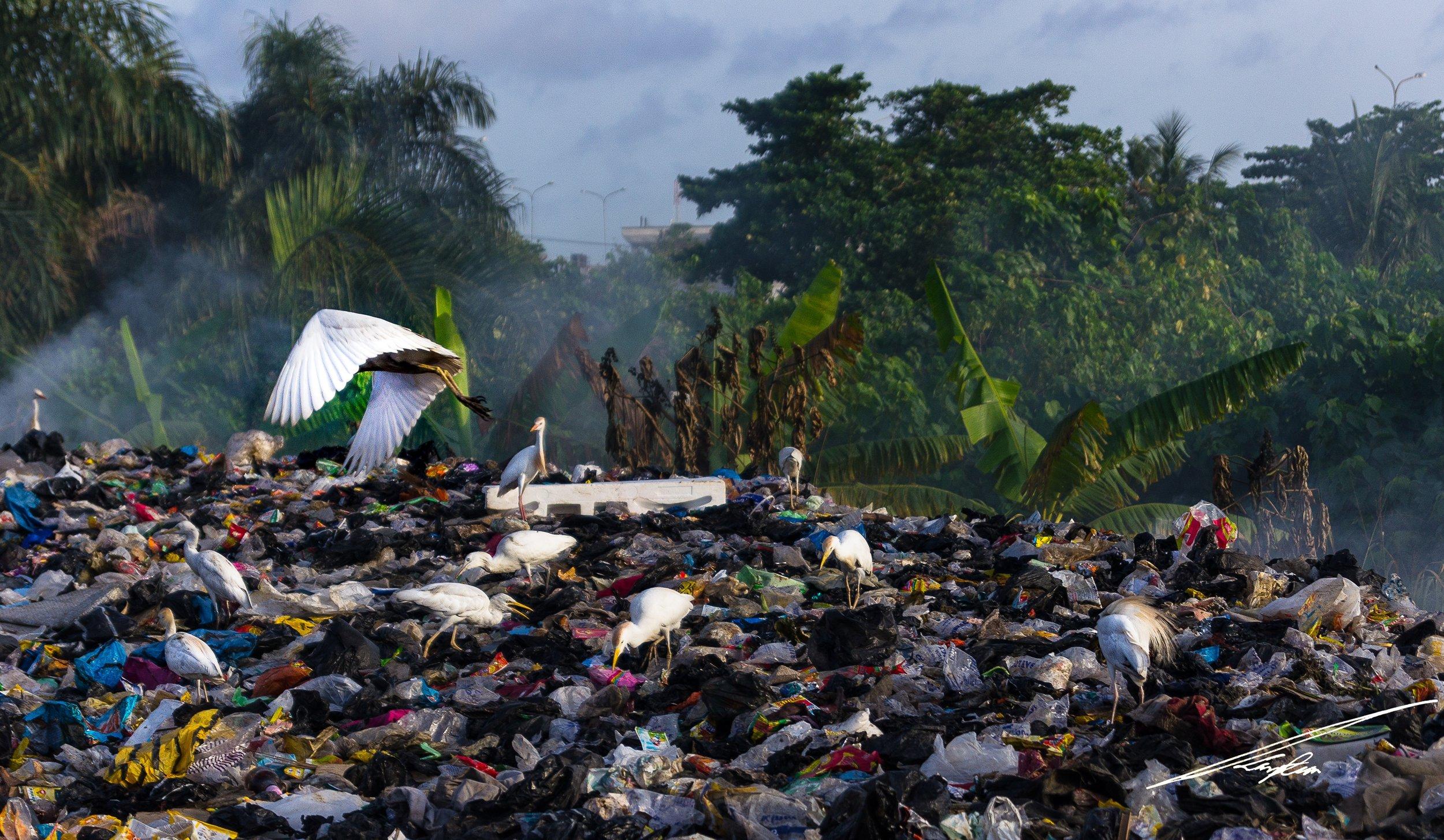 Photo by  Ayotunde Oguntoyinbo on  Unsplash