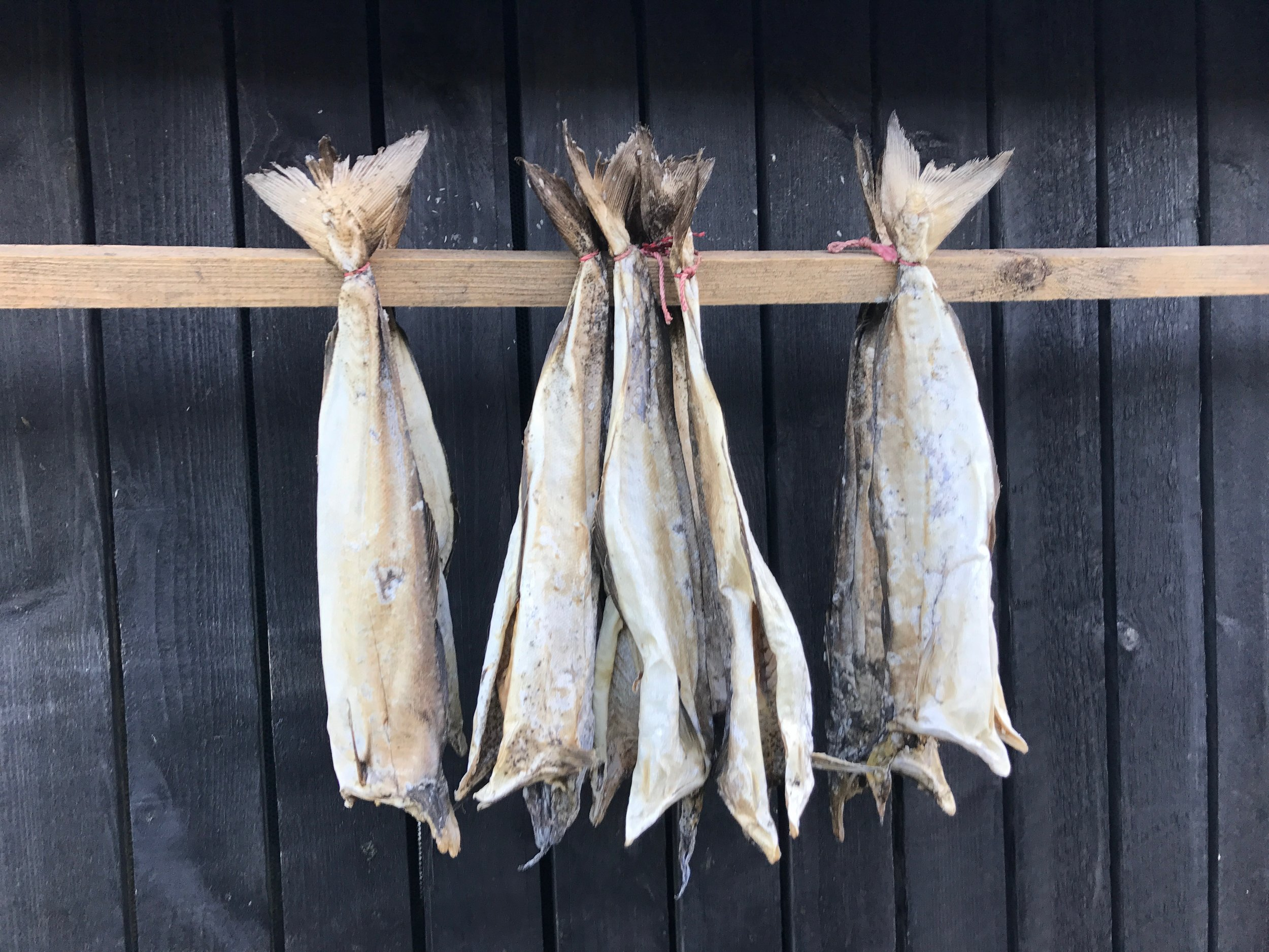 Wind-cured fish is another popular Faroese dish. Faroe Islands - October 2017