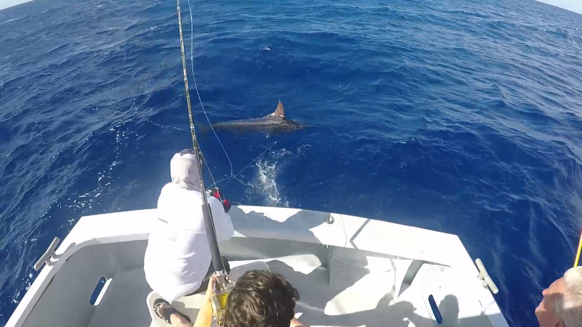 blue-marlin-500lb-kona-hawaii