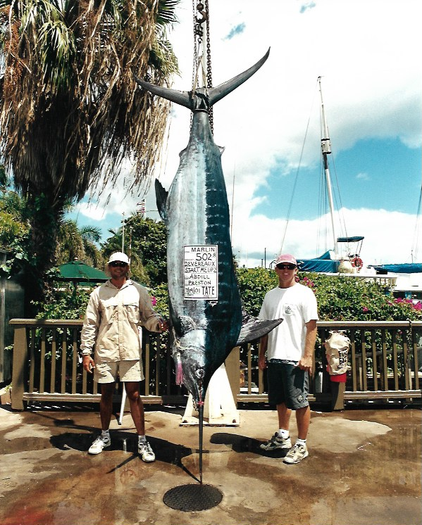 502lb-blue-marlin-maui-hawaii