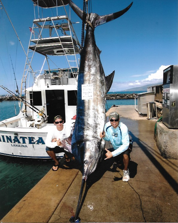 755lb-blue-marlin-largest-2013-maui-hawaii