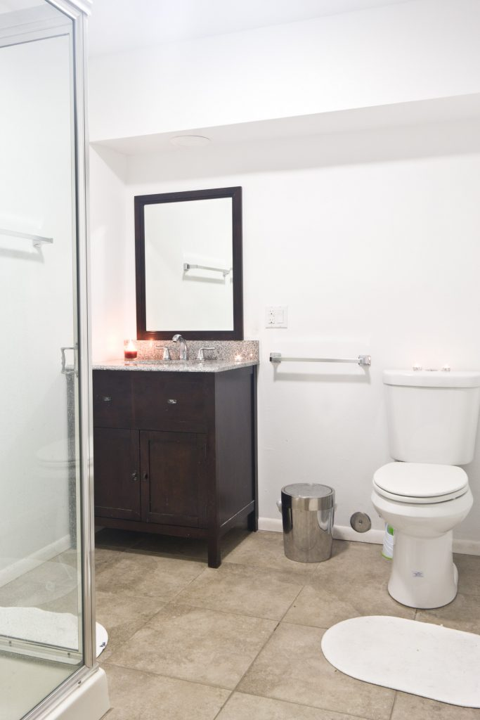 Lower Level Bathroom and Shower