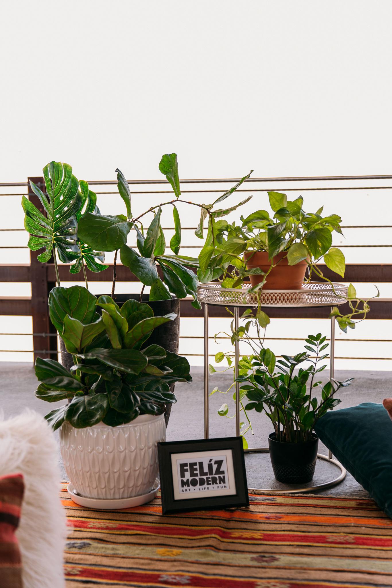 20190504-Florecer-Femme-FIt-AdrianGarcia-FOMASCine_BR31325.jpg