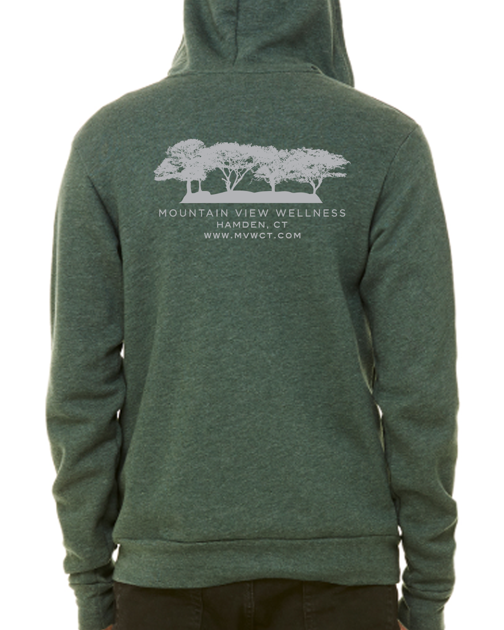 3739-Heather-Forest-Hoodie-Back.png