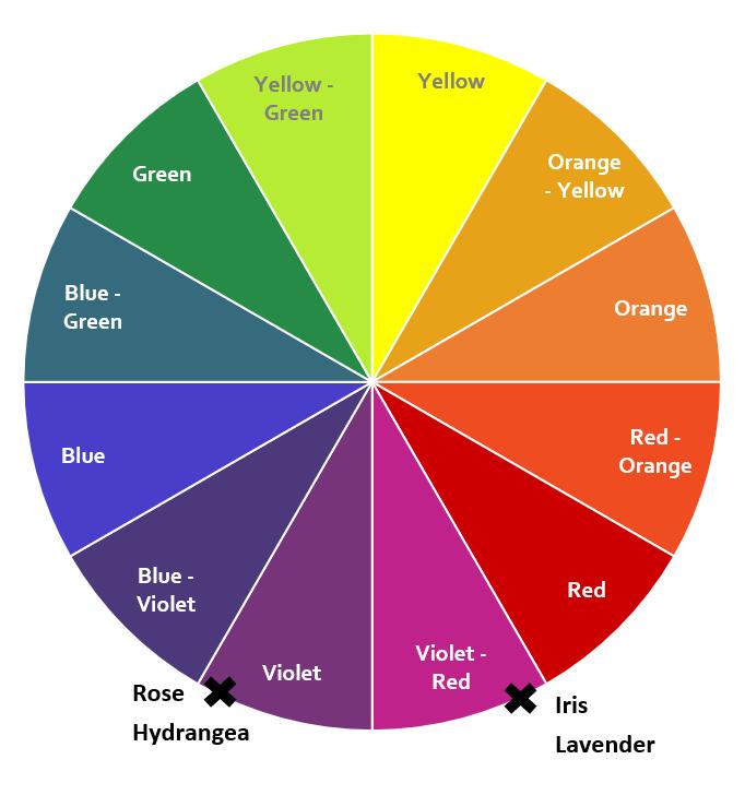 Violet colour wheel.png