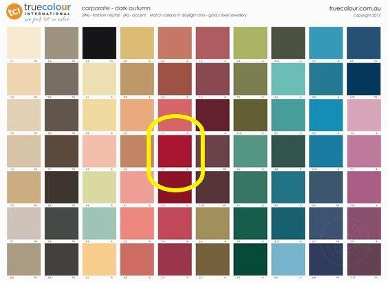 Paprika palette 2.jpg
