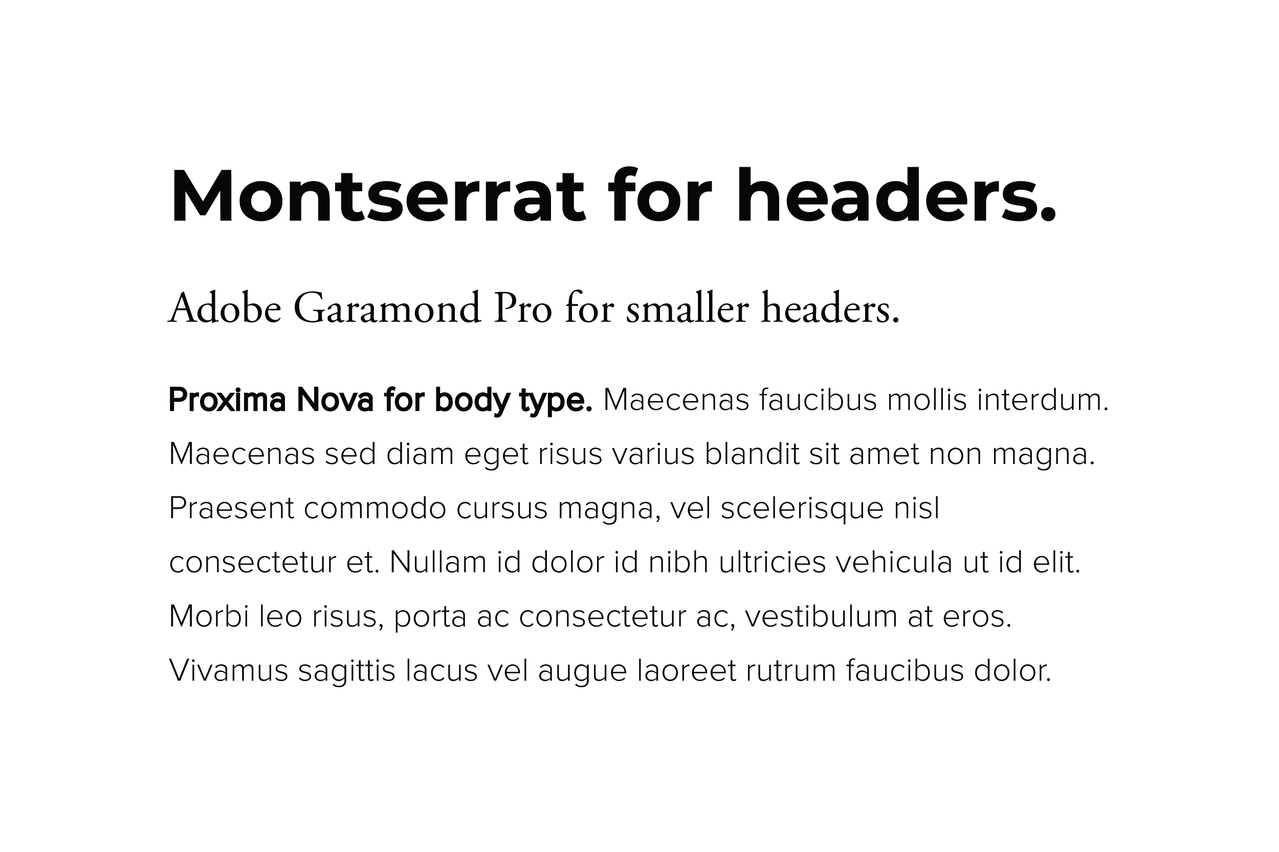 A sans-serif & serif combination was used to create a mood of professionalism.