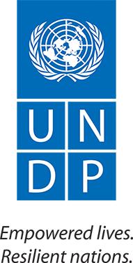 logo-undp-191x378.png