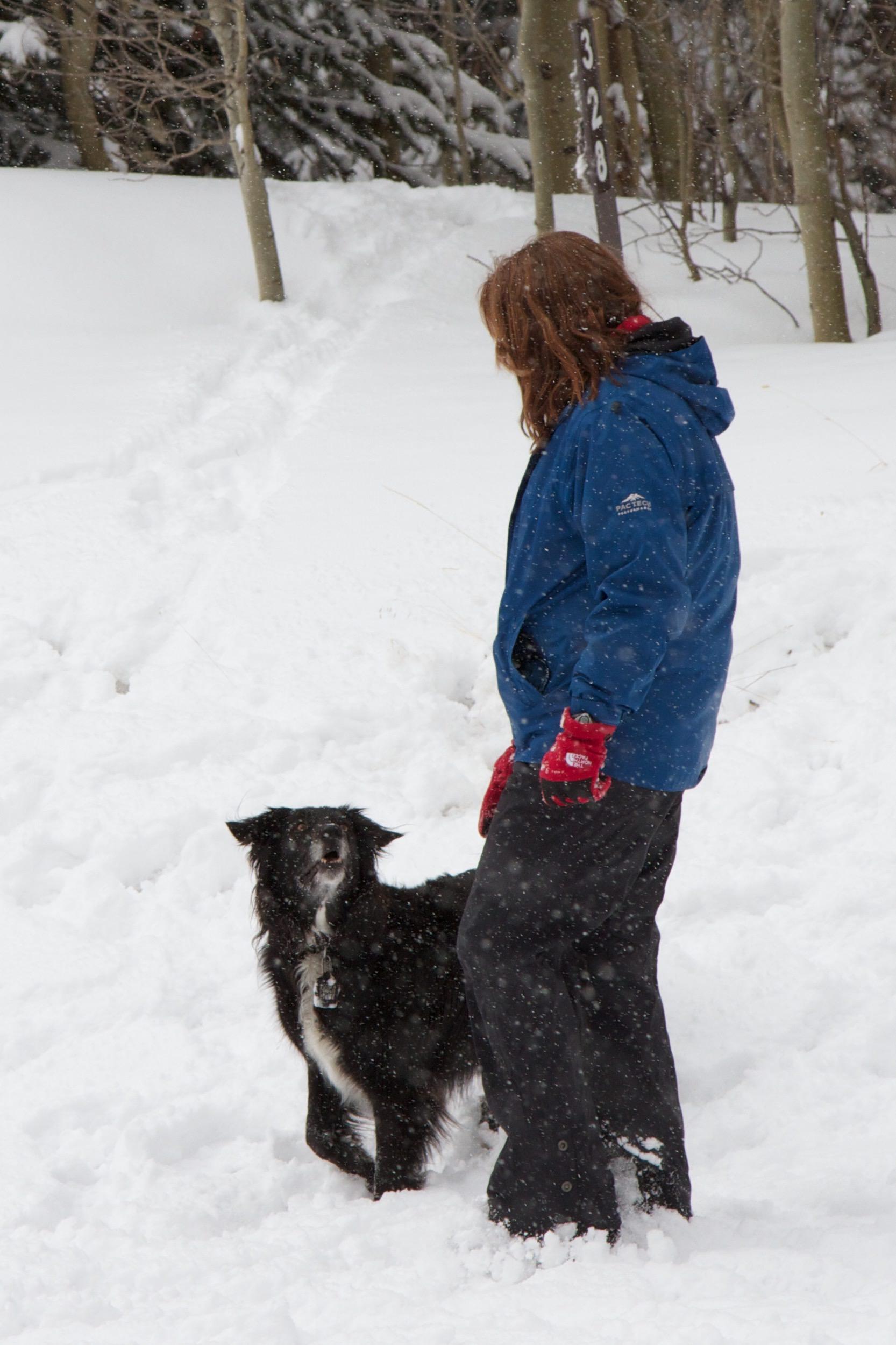 Terrie-rascal-snow.jpg