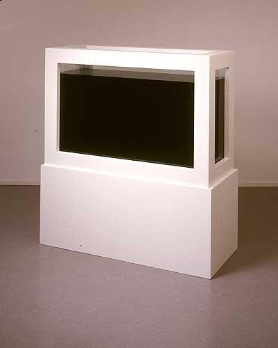 """Damien Hirst """"Away From the Flock"""" / black pigment   (In 1994, an artist named Mark Bridger walked up to the piece - a white lamb floating in a tank of formaldehyde - and poured black pigment into it, creating a new work he called """"Black Sheep"""")"""