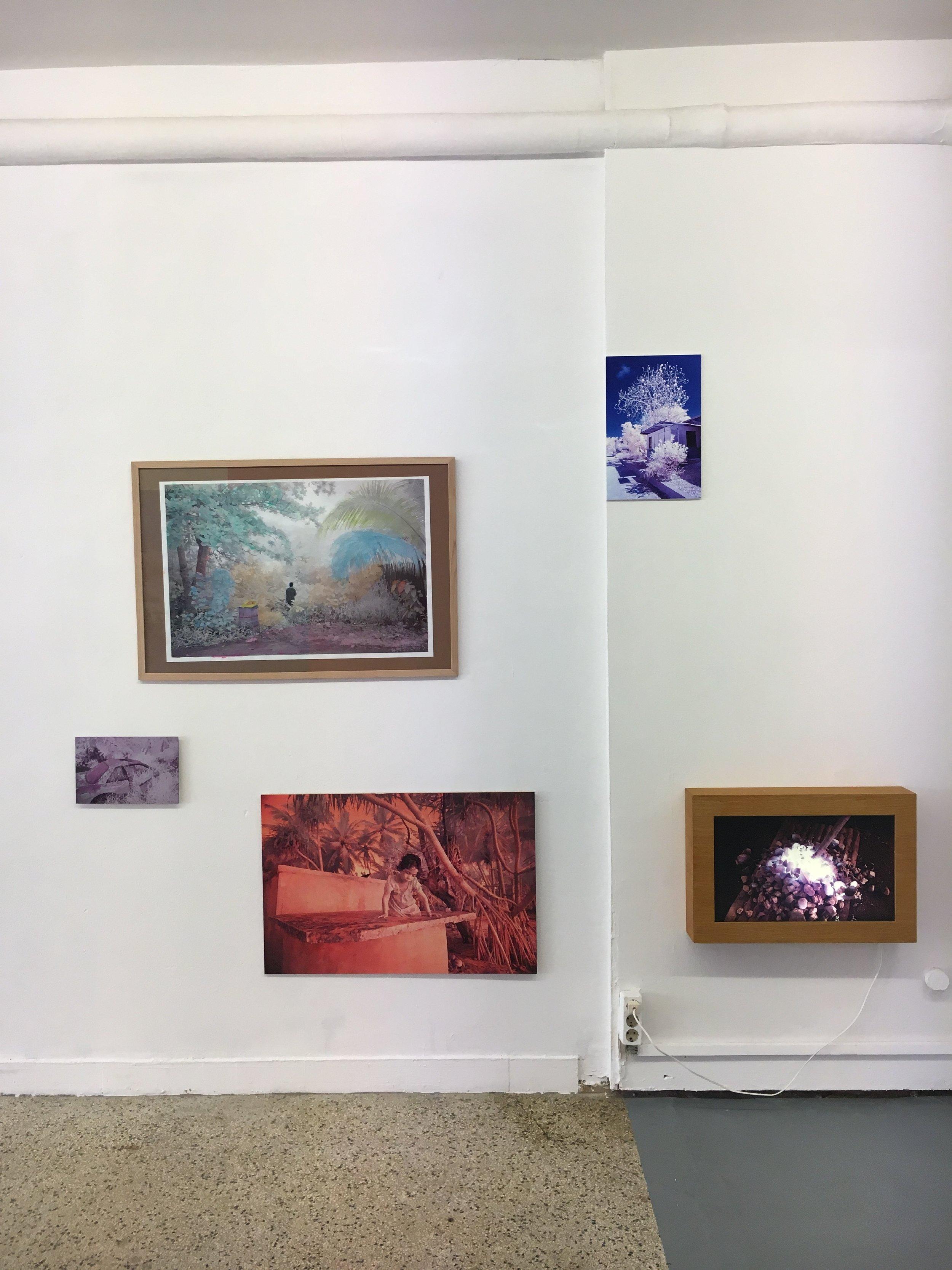 Sanne de Wilde, the island of the colorblind / Scope Galerie