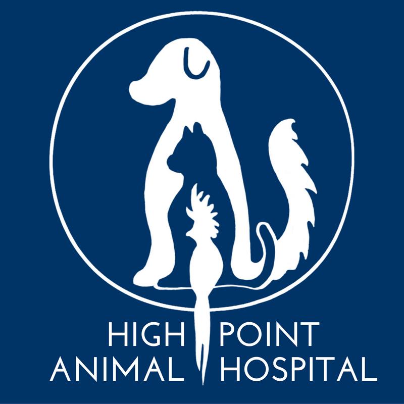 HPAH Logo.png