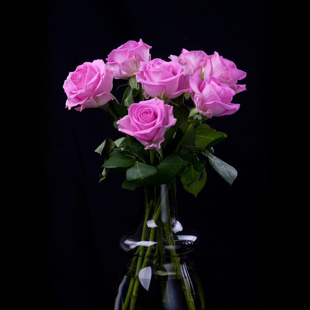 Vases and Arrangements -