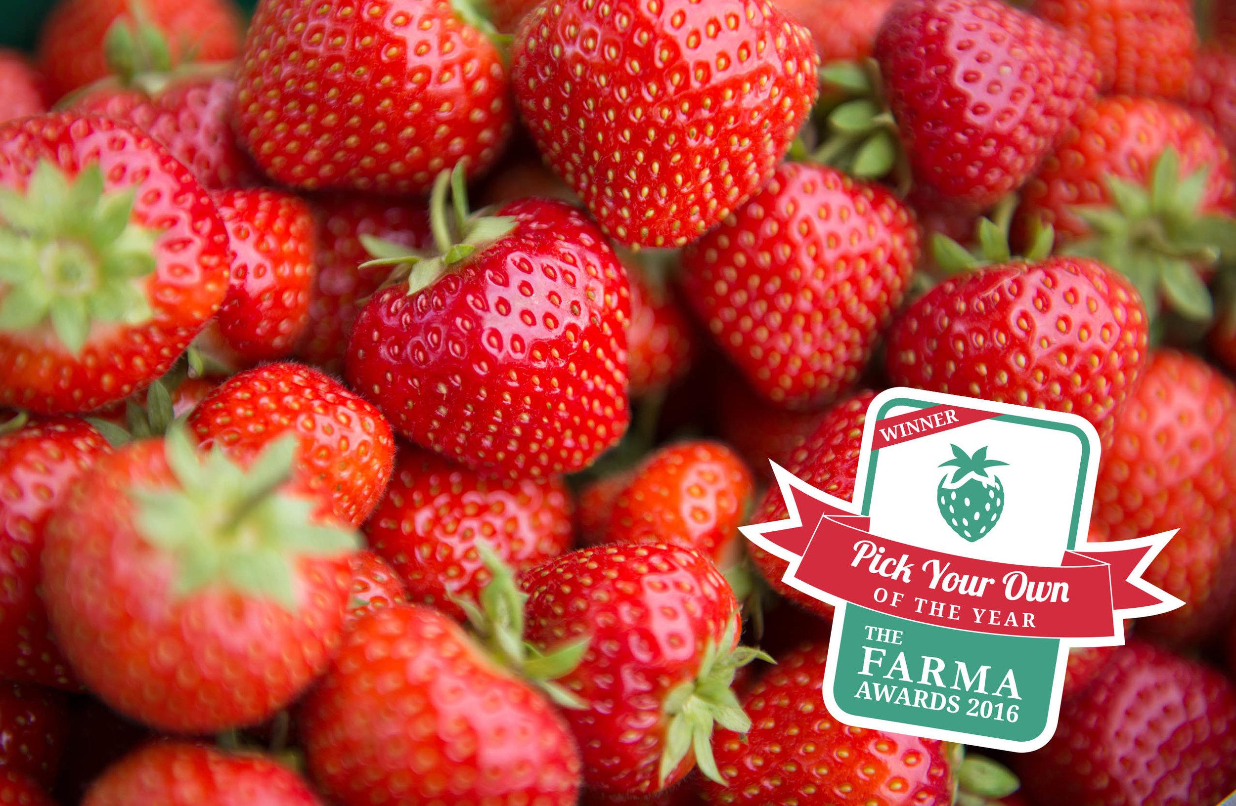 Lotmead_Farm_149_FARMA.jpg