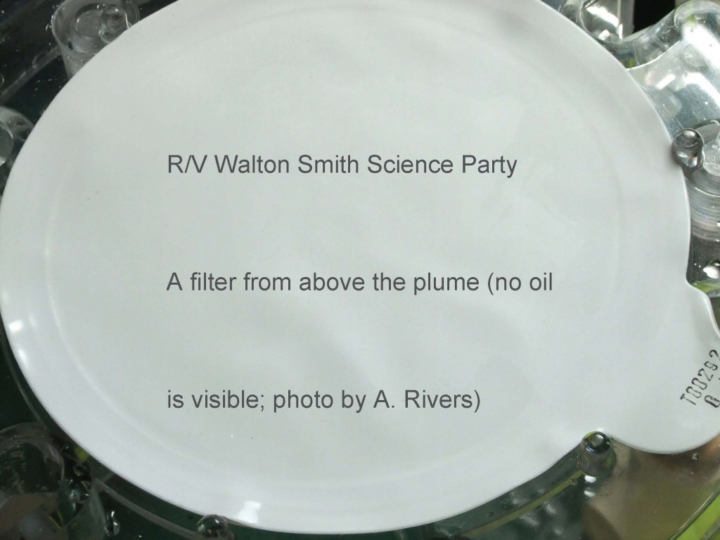 Filter after 10L of water from 300m above the plume was passed through it--there was no visible oil on the filter