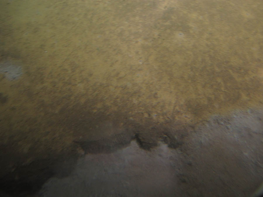 Orange/brown, iron-rich terrace; at the lower edge a brine flow was visible
