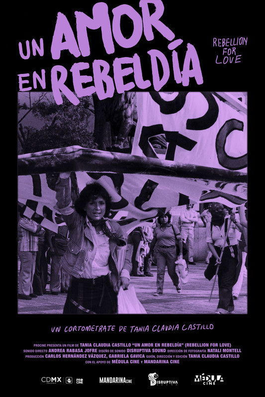 Rebellion for love - A documentary portrait of activist and artist Yan María Castro, pioneer of the lesbian-feminist movement in Mexico.
