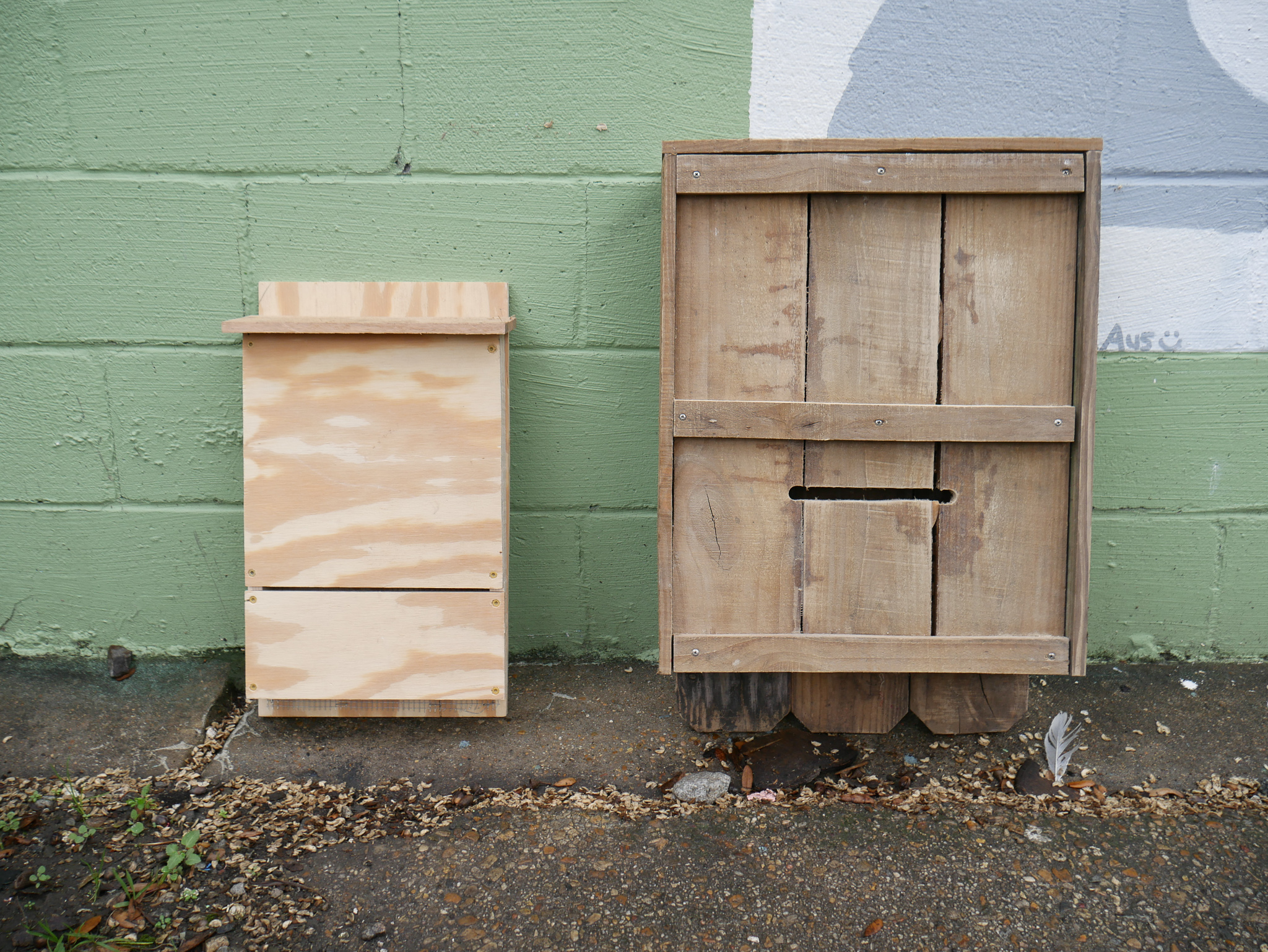 Build Your Own Bat House — the Green Project