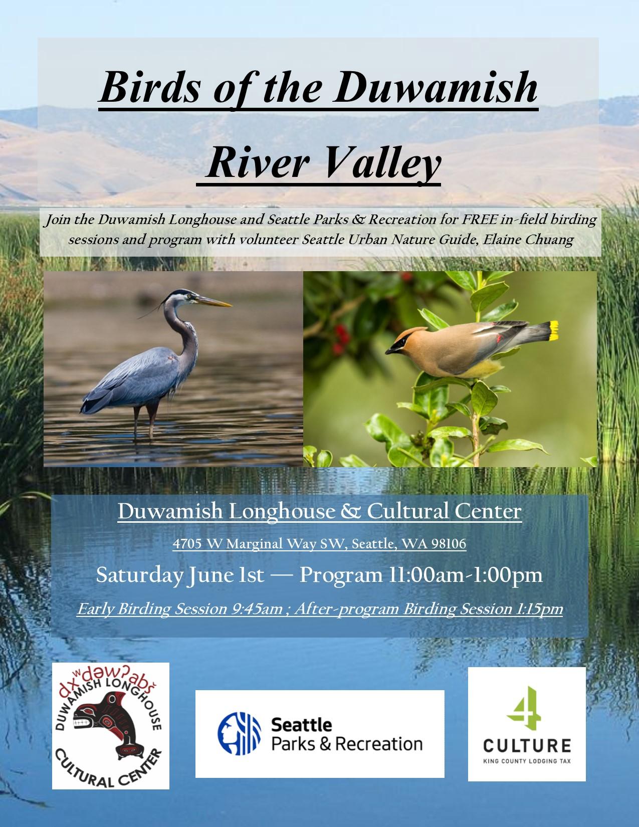 Birds Poster.jpg