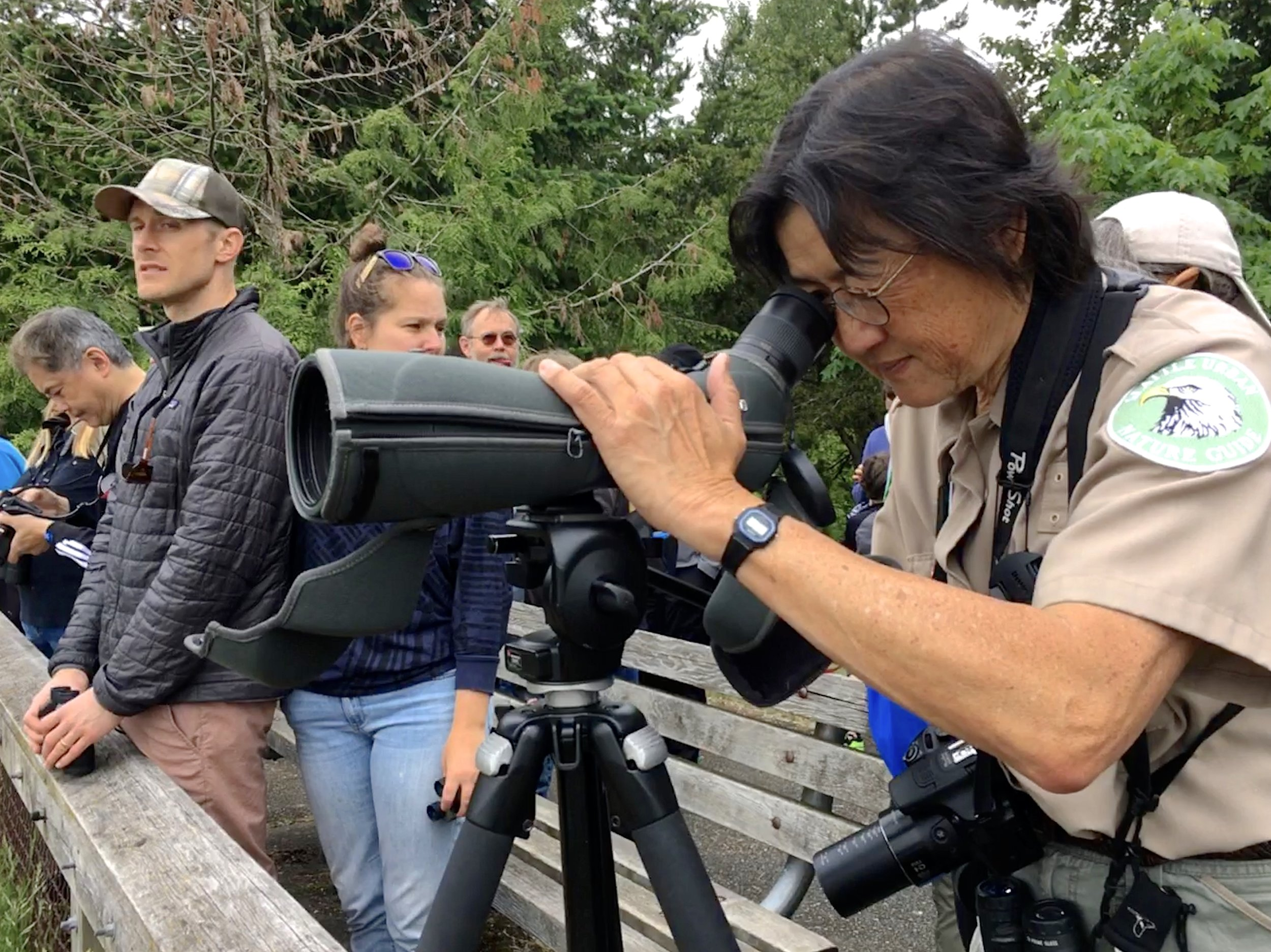 Birds of the Duwamish River Valley, June 1, 2019 - As part of our continued collaboration with the Seattle Parks Department, Naturalist Elaine Chuang ran a free program educating visitors on our native birds of the Duwamish River Valley. The event drew in visitors from all over the city for an educational talk and several birding outings by the river. Check our events page for more exciting events with Seattle Parks!