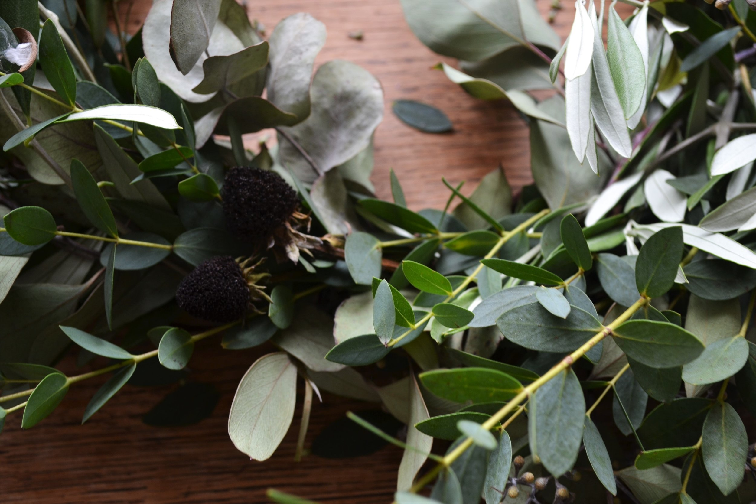 How-to-make-an-autumn-wreath-webb-and-farrer-brighton-flower-workshop (9).JPG