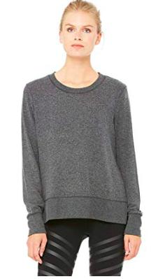 fly in comfort - alo sweatshirt -