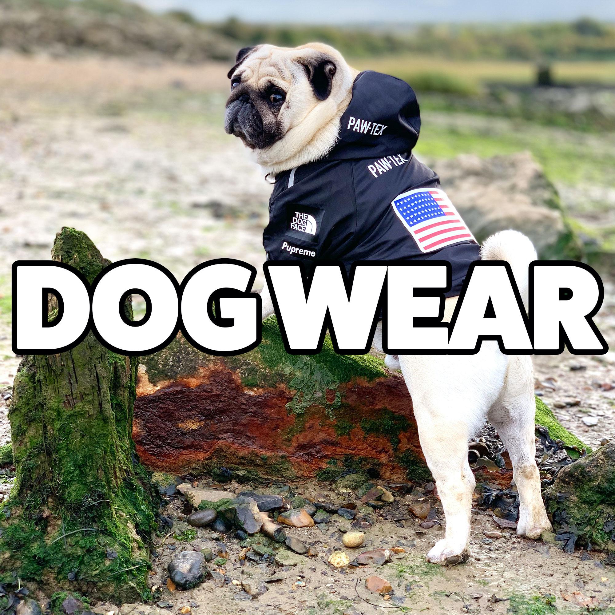 dog-wear.jpg