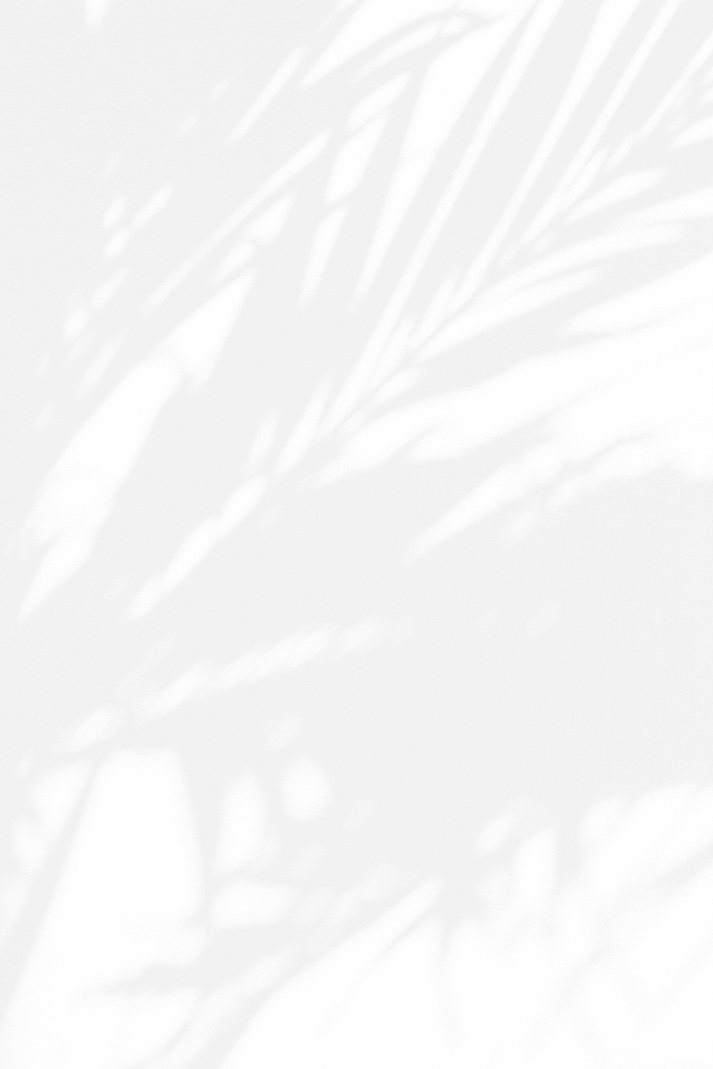 palm-texture-white.jpg