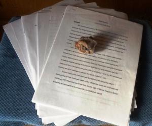 manuscriptrock-cindyfazzi.jpg