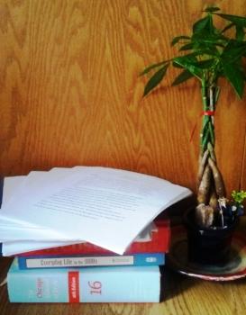 manuscriptplant-cindyfazzi.jpg