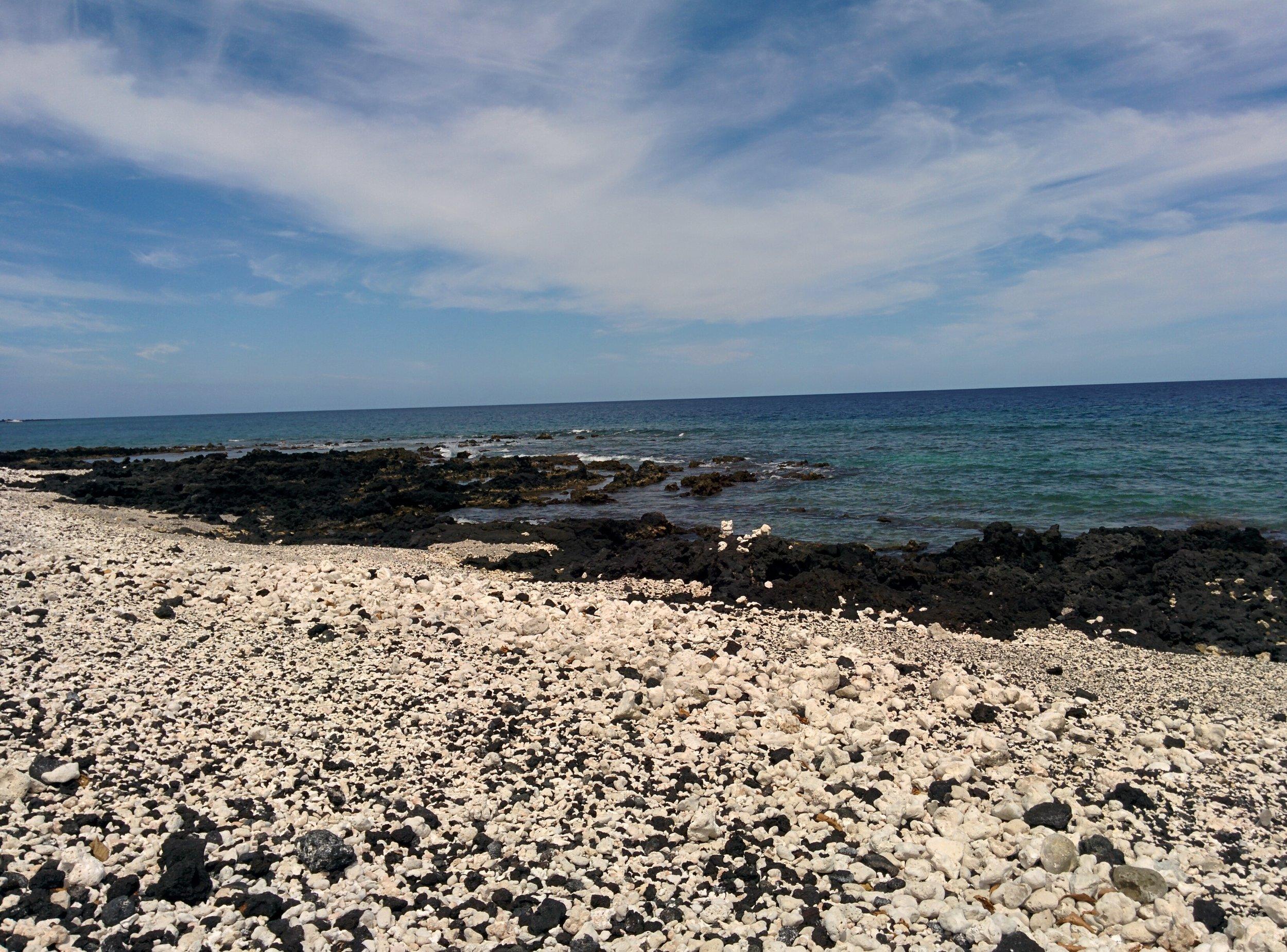 rocky-beach-big-island-2017-cindyfazzi-pic.jpg