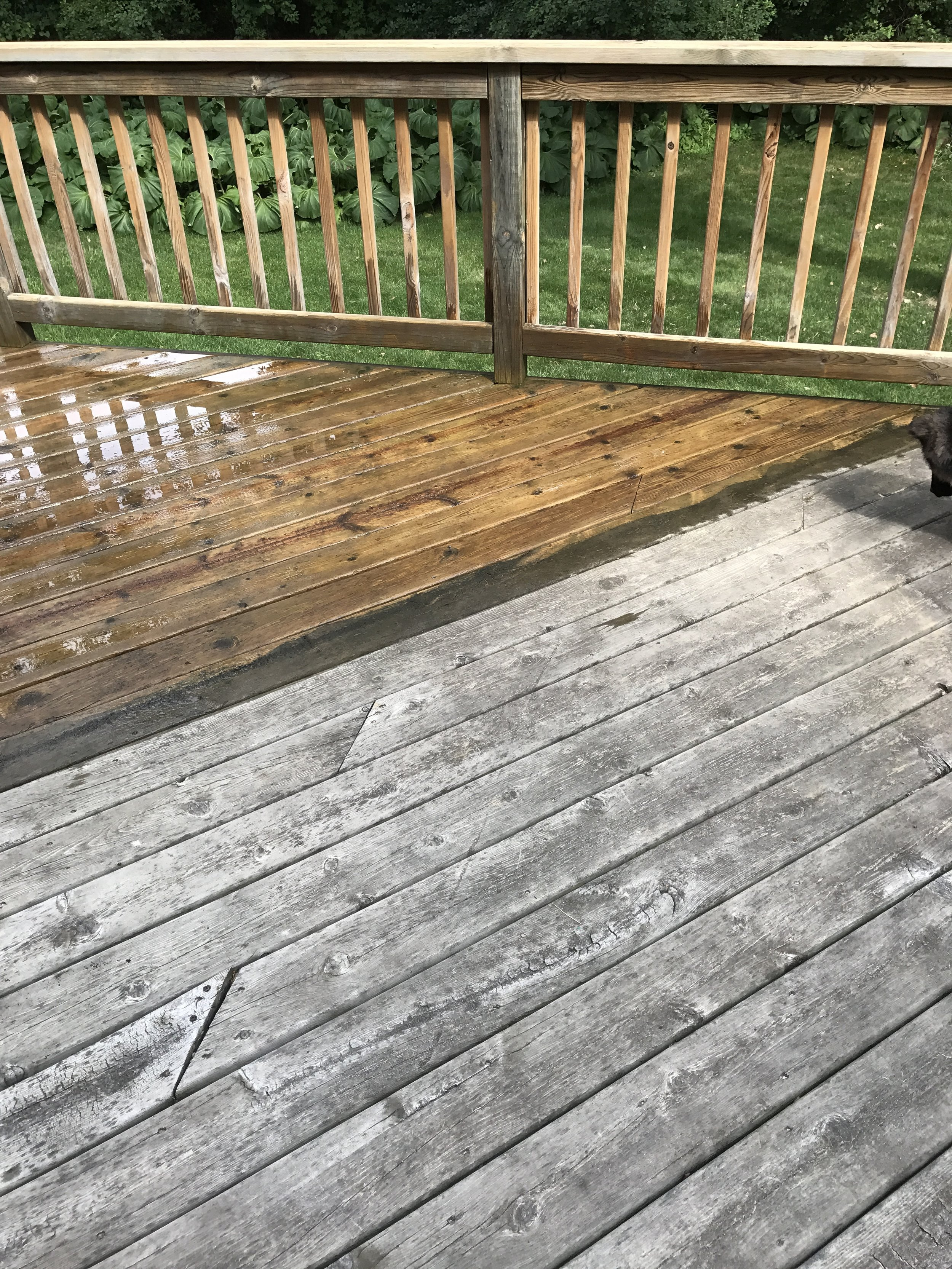 Powerwashing: before (right) & after (left)