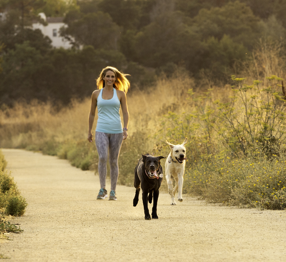 photography-for-dog-walkers.jpg