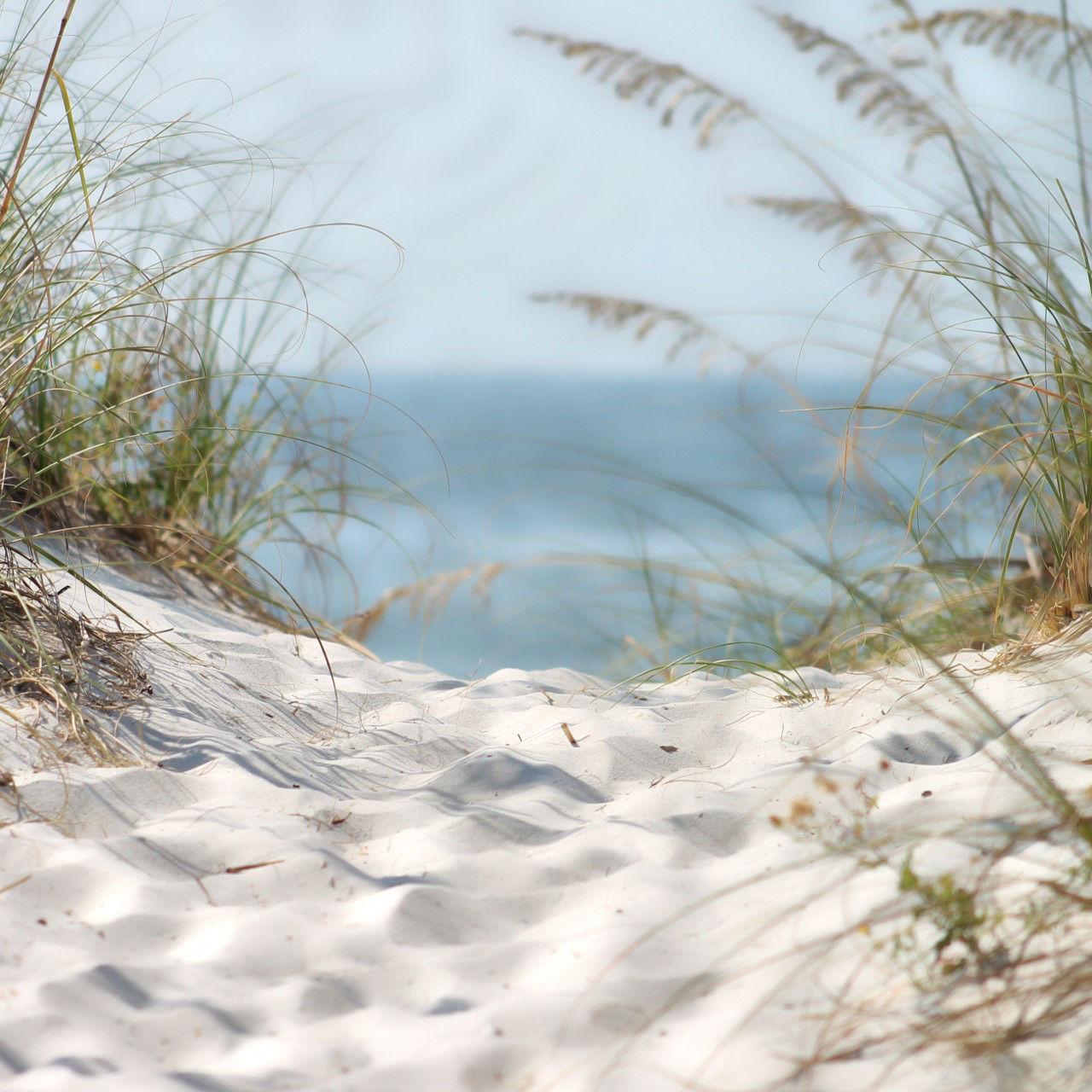 LWE_beach_1280_Square.jpg