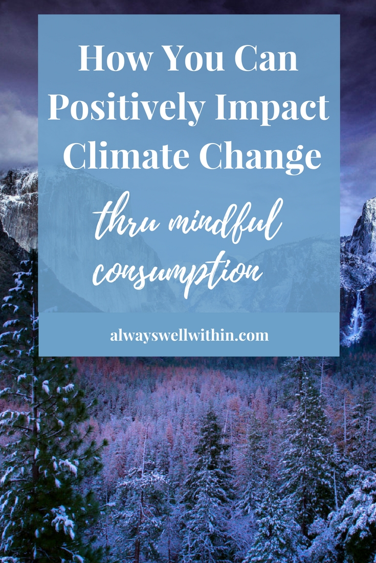 Climate Change | Mindfulness | Mindful Consumption