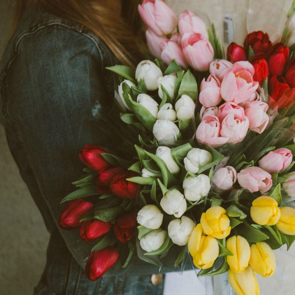 OYH_Tulips_Reversed.jpg
