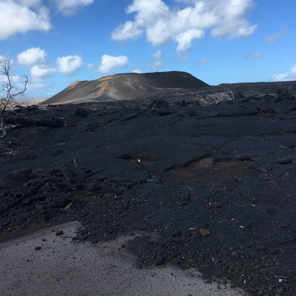 Fissure 8 produced the greatest volume of lava during the 2018 lava eruption on the Big Island of Hawaii. It created a mile-wide river of lava that flowed more than 4 miles to the ocean, taking out hundreds of homes and many favorite recreational spots. This image was take on December 6th, about 3 months after the lava eruption ended