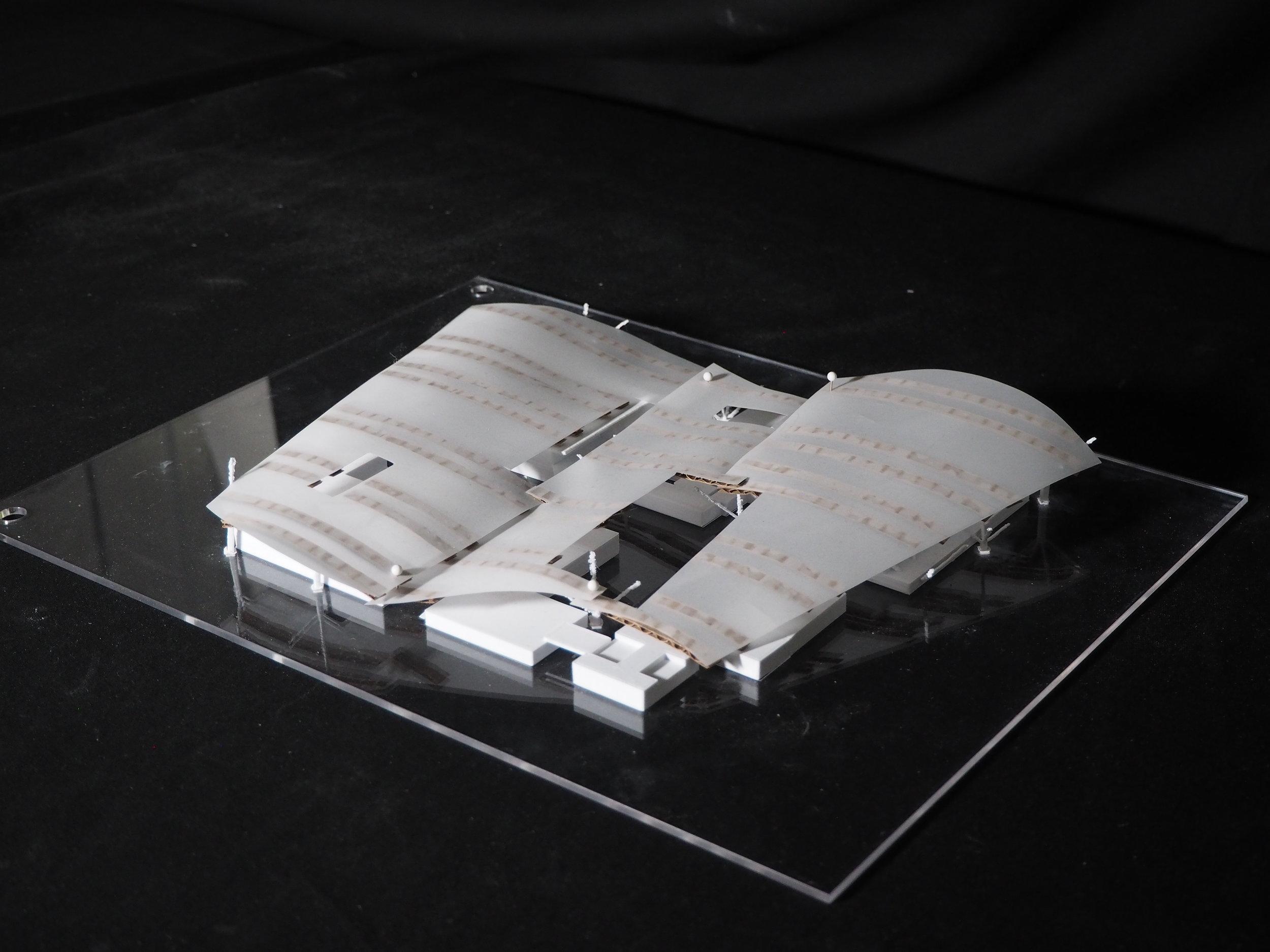 Canopy Model.JPG