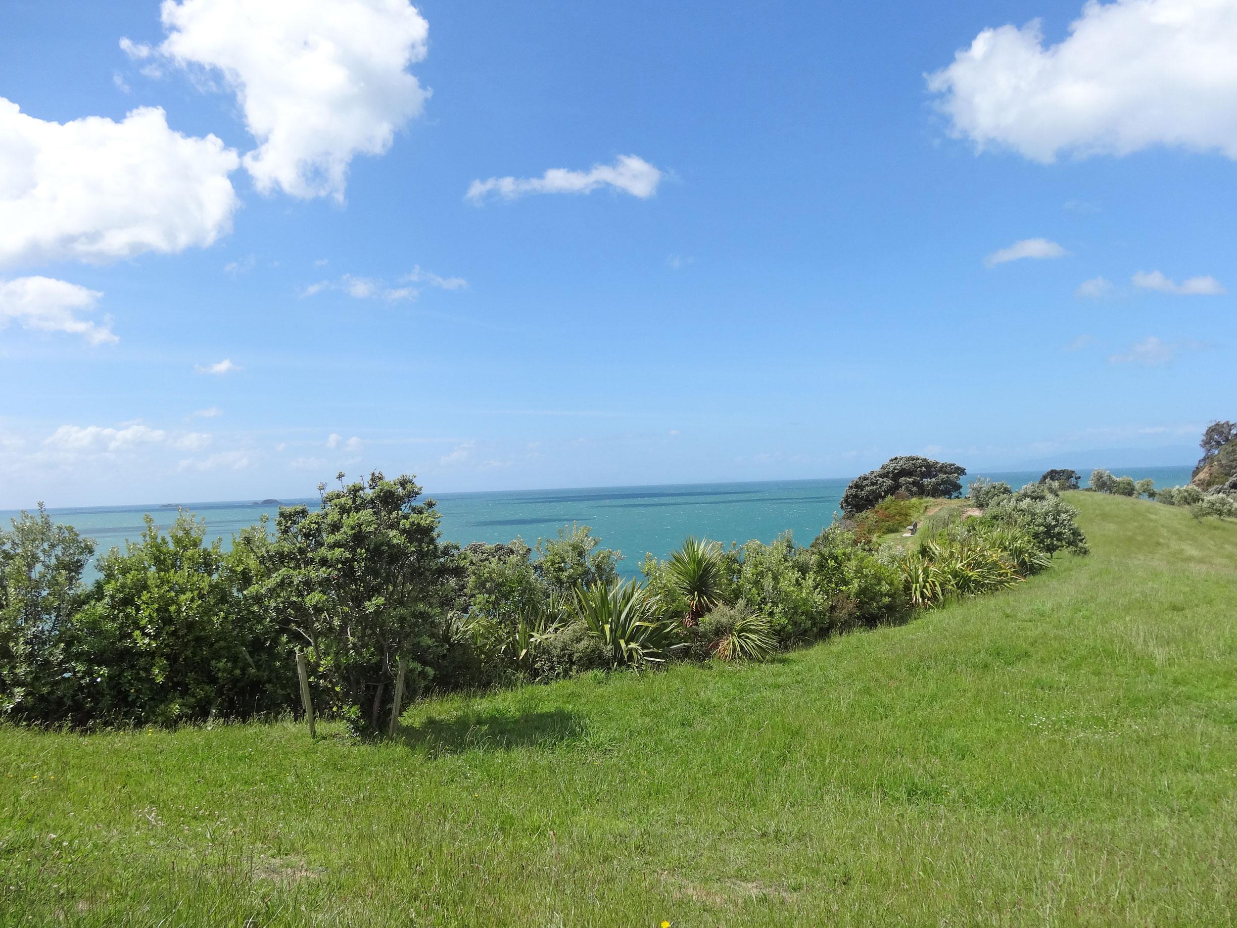 waiheke-island-residental-landscape-design-07.jpg