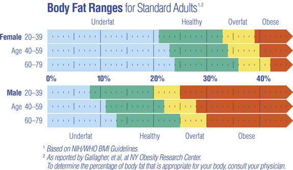 Body Fat Composition