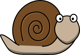 This is a snail that shows the golden ratio on its back. I am calling it Fred.