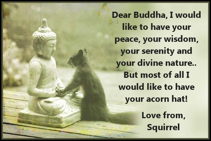Buddha might have liked this picture, because he probably had a sense of humour.
