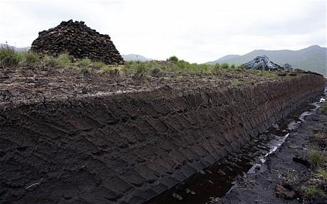 Peat farming